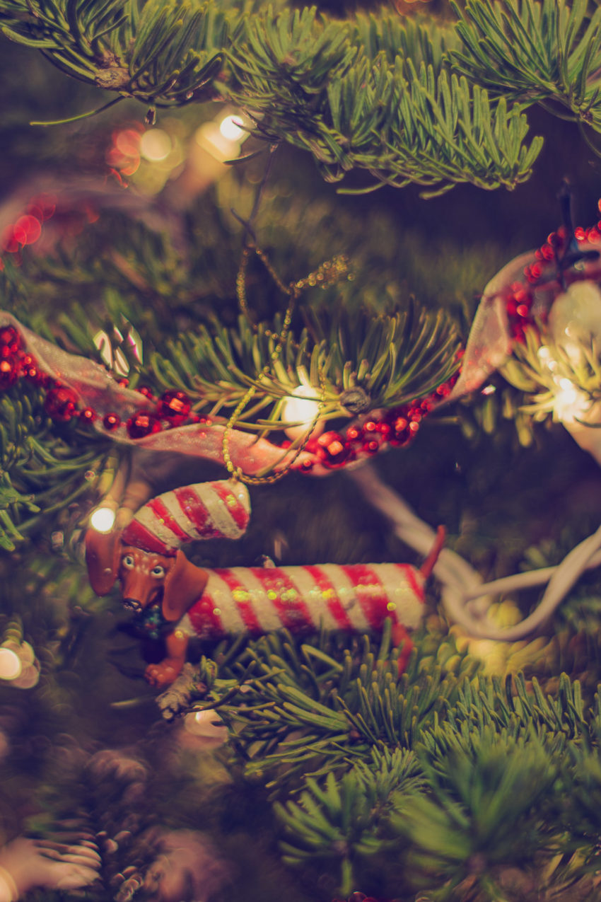 Candy Cane Dachshund Ornament