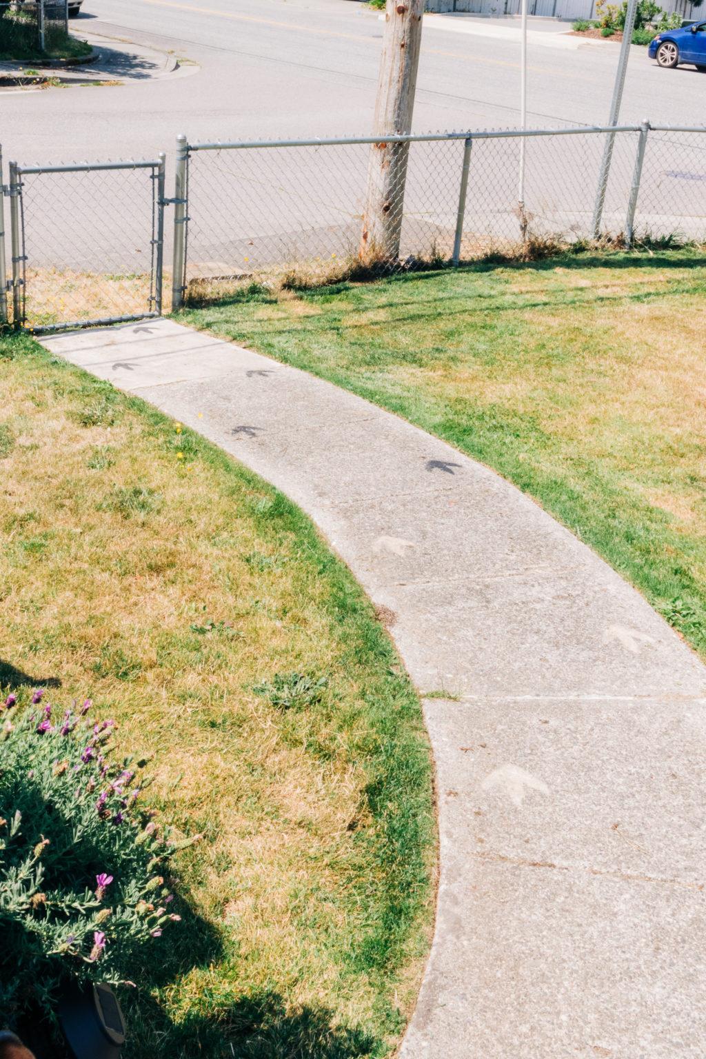 Dinosaur tracks on a walkway